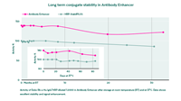 Graph illustrating long term conjugate stability in Antibody Enhancer